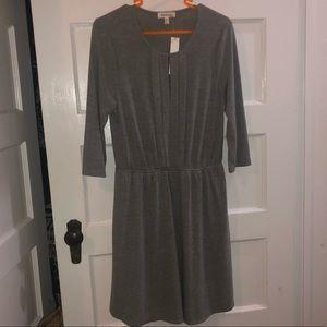 NWT Gray Dress